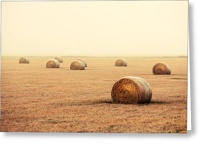 Bales In The Fog Greeting Card by Todd Klassy