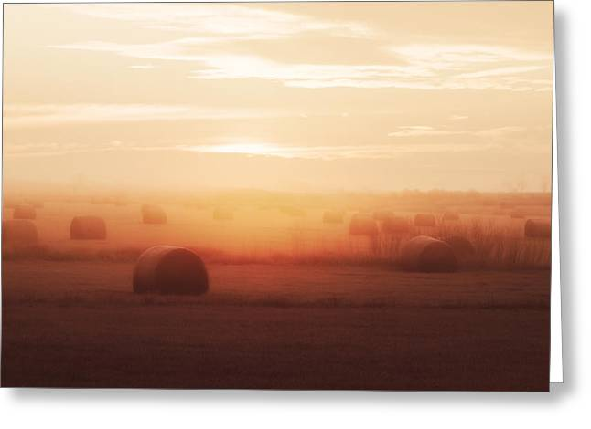 Bales In The Mist Greeting Card