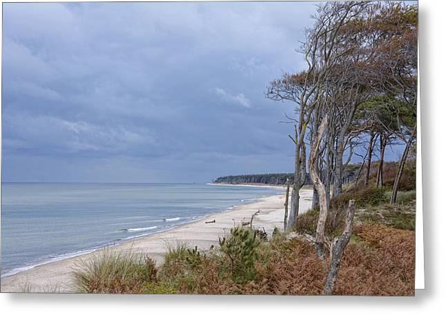 Baltic Sea Meets The Darss Greeting Card