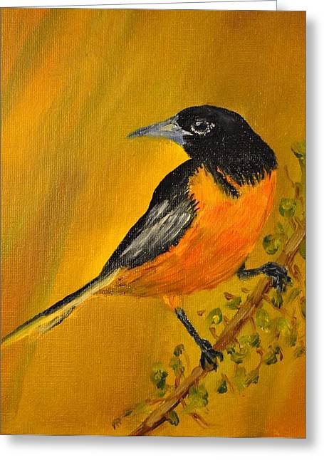 Baltimore Oriole Greeting Card by James Higgins