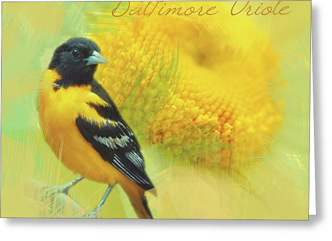Greeting Card featuring the photograph Baltimore Oriole Watercolor Photo by Heidi Hermes