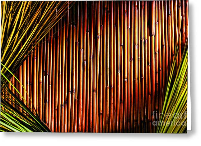 Bamboo And Grass Greeting Card by Olivier Le Queinec