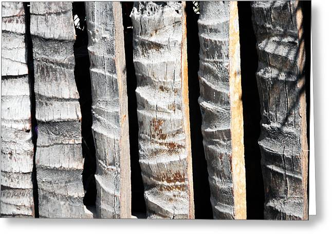 Bamboo Fence Greeting Card by Ron Kandt
