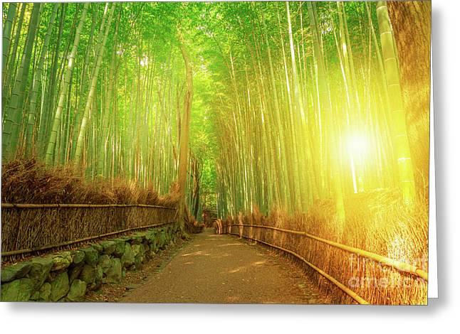 Bamboo Grove Arashiyama Kyoto Greeting Card