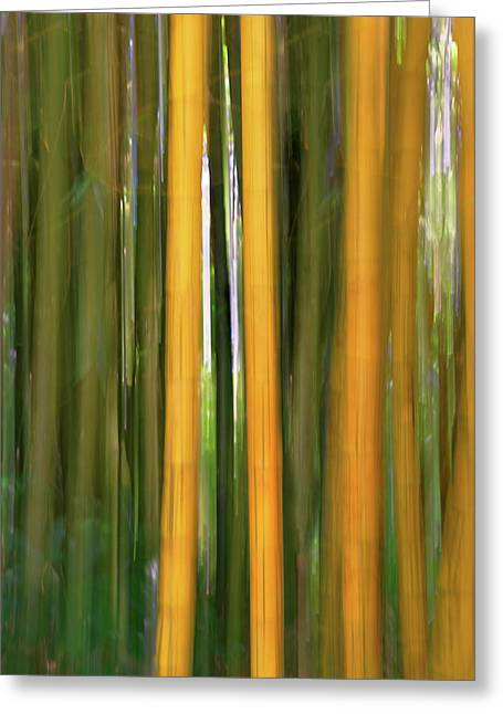 Bamboo Impressions Greeting Card by Francesco Emanuele Carucci