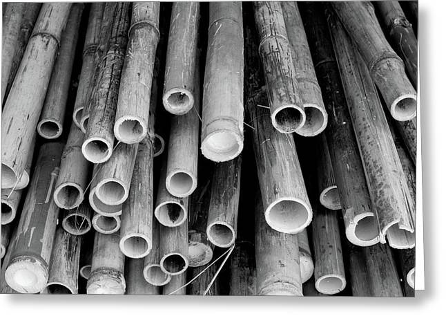 Greeting Card featuring the photograph Bamboo  by Jingjits Photography