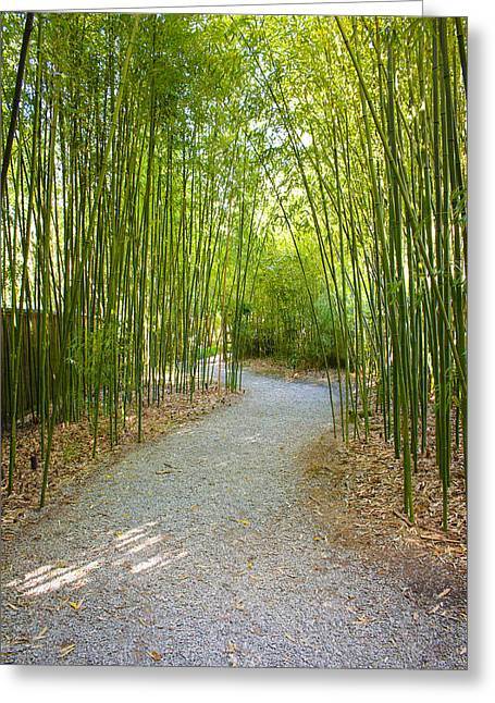 Bamboo Path 1 Greeting Card by Denise Keegan Frawley