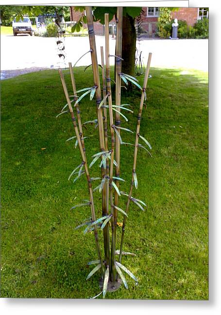 Bamboo Greeting Card by Stanger Moore