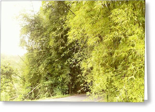 bambu en Limani, Adjuntas Greeting Card