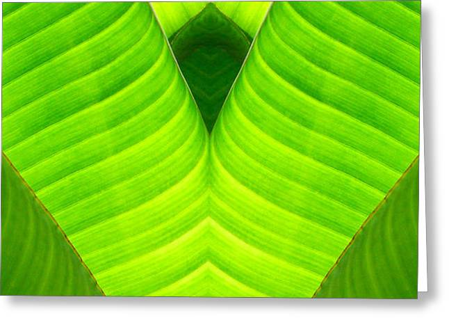 Banana Leaf Abstract 2 Greeting Card