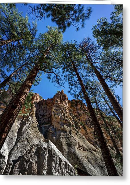 Bandelier Cliffs And Trees Greeting Card by Stuart Litoff