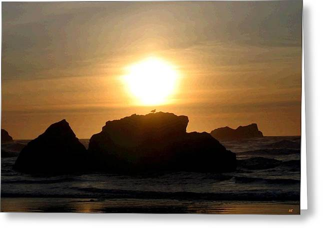 Surf Silhouette Greeting Cards - Bandon Beach Silhouette Greeting Card by Will Borden