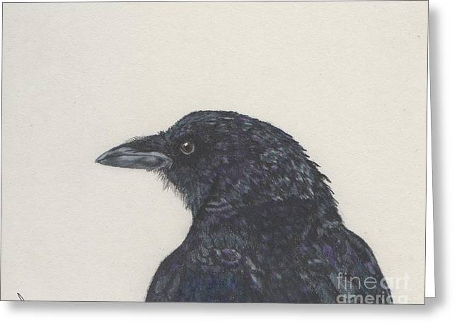 Bandy The Crow Greeting Card by Barb Kirpluk