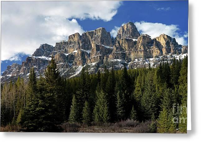 Banff - Castle Mountain Greeting Card by Terry Elniski