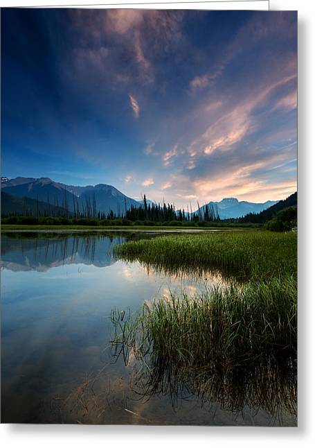 Banff Sunset Greeting Card by Cale Best