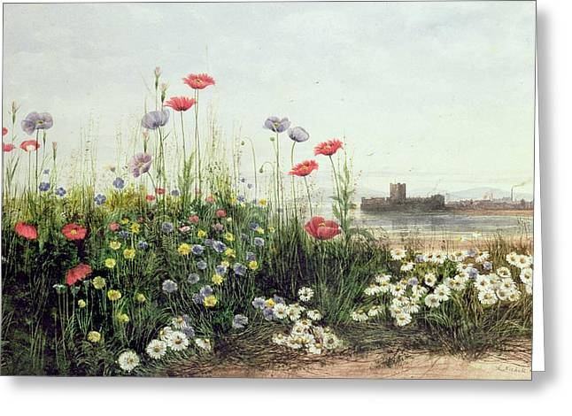 Banks Greeting Cards - Bank of Summer Flowers Greeting Card by Andrew Nicholl