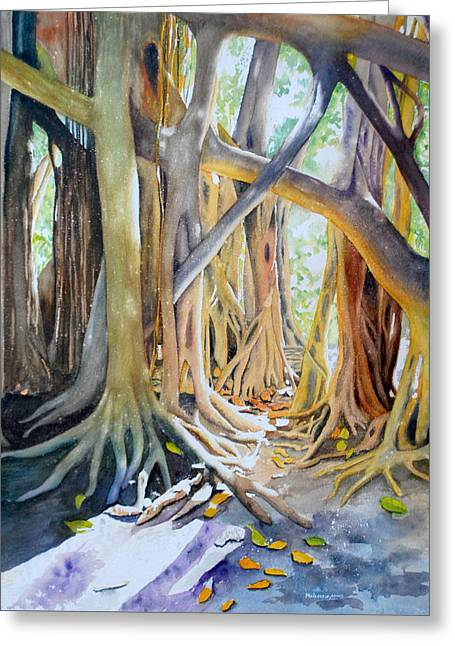 Banyan Shadow And Light Greeting Card by Terry Arroyo Mulrooney