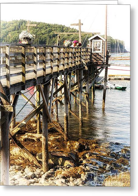 Bar Harbor Pier Greeting Card by Jane Rix