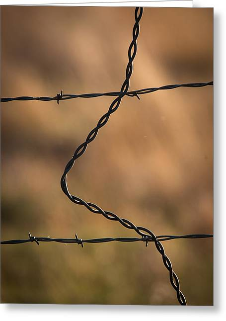 Barbed And Bent Fence Greeting Card by Monte Stevens