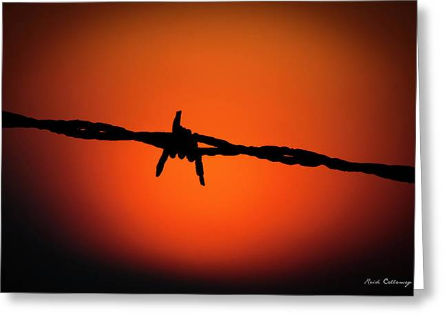 Barbed Wire Art Horse Art Greeting Card