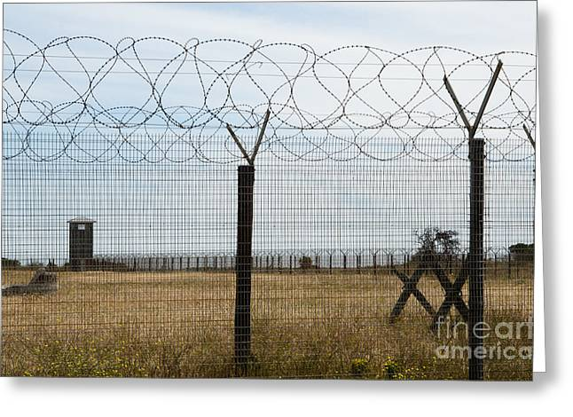 Barbed Wire Fence At Robben Island Greeting Card
