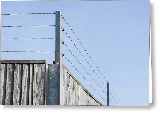 Barbed Wire Fence Greeting Card by Tom Gowanlock