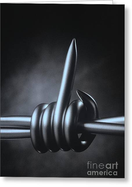 Greeting Card featuring the photograph Barbed Wire by Hans Janssen