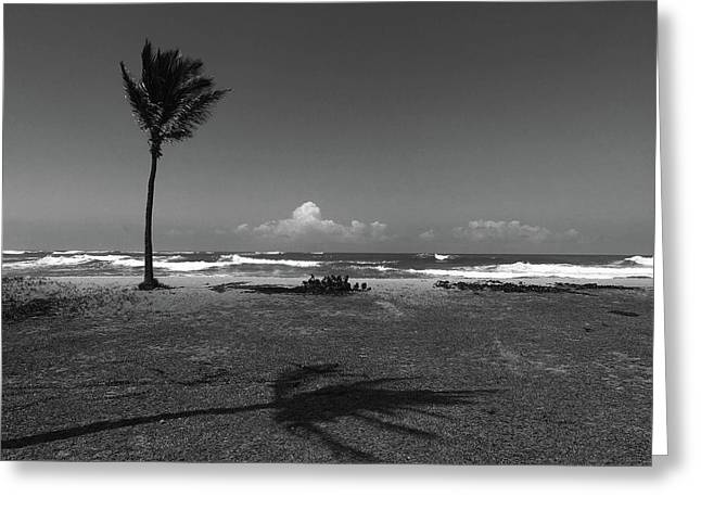Greeting Card featuring the photograph Barbers Pt., Oahu by Art Shimamura