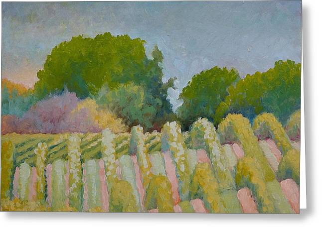 Barboursville Vineyards 1 Greeting Card by Catherine Twomey