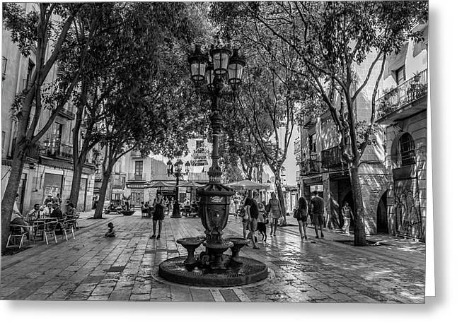 Barcelona Square With Trees Greeting Card by Georgia Fowler