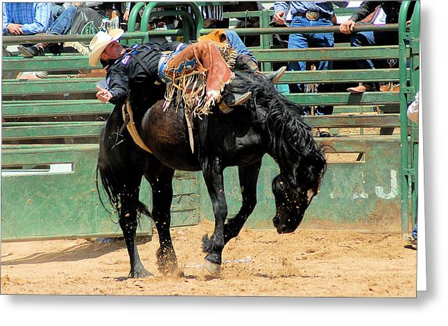 Bareback Bronc Rider Greeting Card by Cheryl Poland