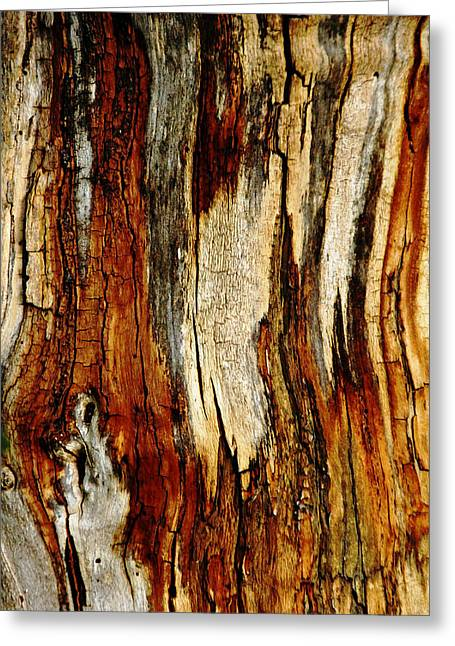 Bark Abstract Greeting Card by Debbie Oppermann