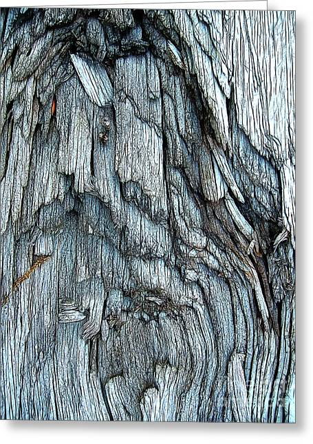 Bark Detail Greeting Card