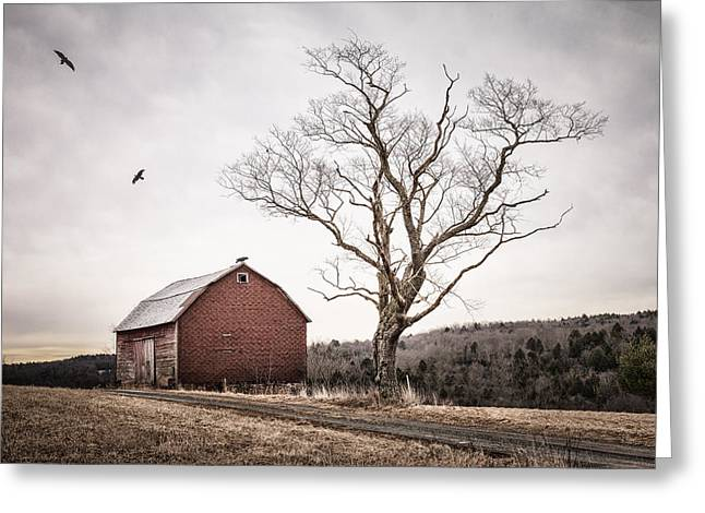 barn and tree - New York State Greeting Card by Gary Heller