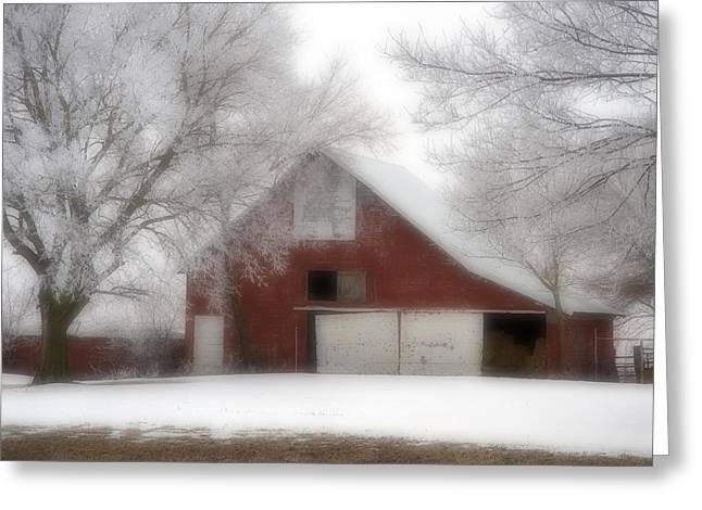 Barn Fog And Hoarfrost Greeting Card by Fred Lassmann