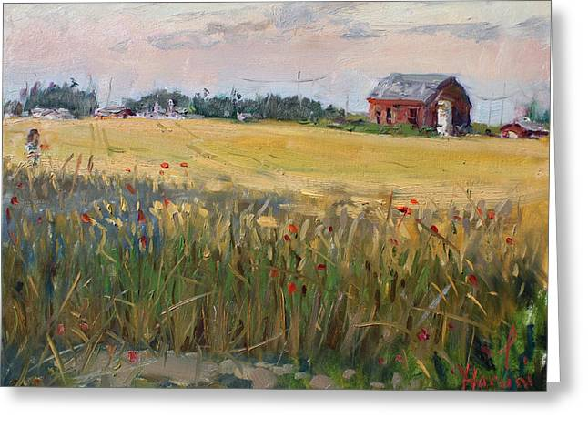 Barn In A Field Of Grain Greeting Card by Ylli Haruni