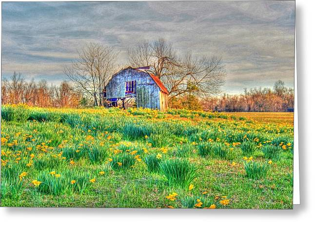 Barn In Field Of Flowers Greeting Card by Geary Barr
