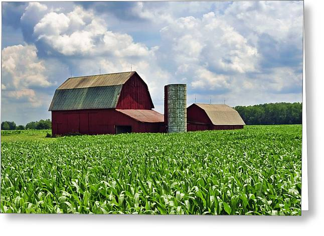 Barn In The Corn Greeting Card
