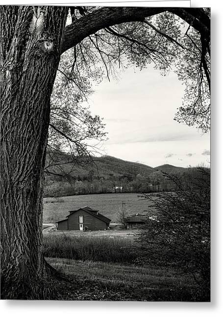 Barn In The Valley In Black And White Greeting Card by Greg Mimbs