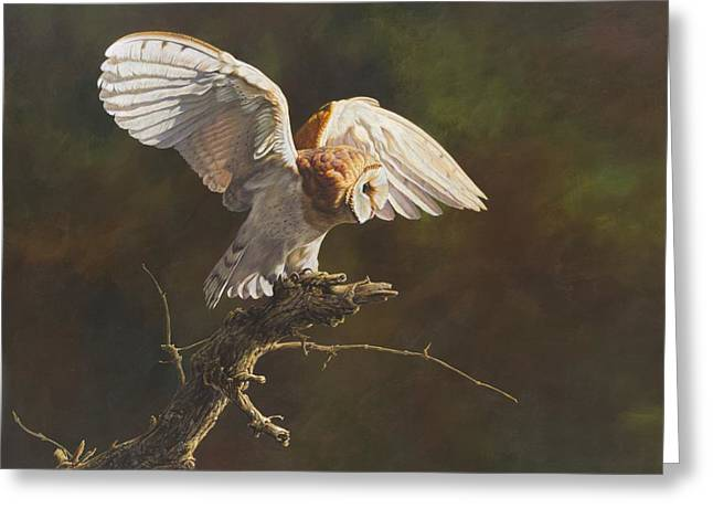 Greeting Card featuring the painting Barn Owl by Alan M Hunt