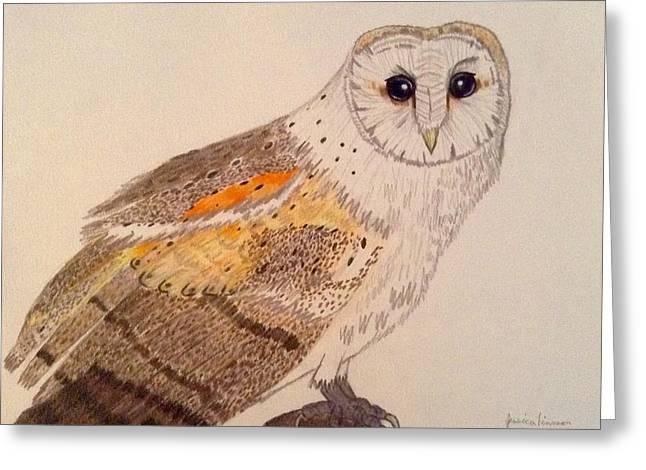 Barn Owl  Greeting Card by My Art