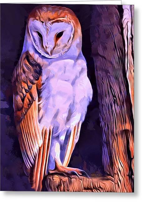 Barn Owl Portrait  Greeting Card by Scott Wallace