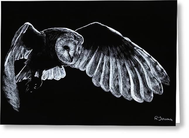 Barn Owl Greeting Card by Richard Young