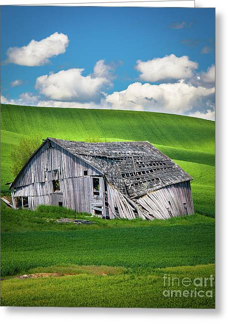 Barn Ruin Greeting Card by Inge Johnsson