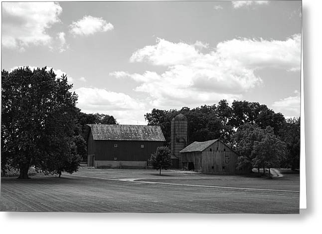 barn scene No.2 Greeting Card by Tom Druin