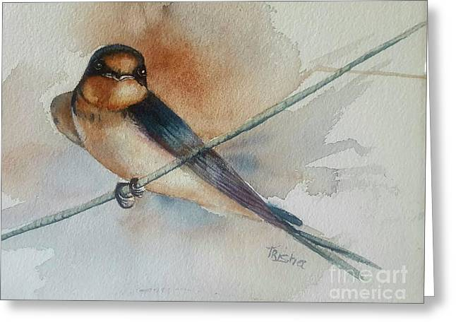 Barn Swallow Greeting Card by Patricia Pushaw