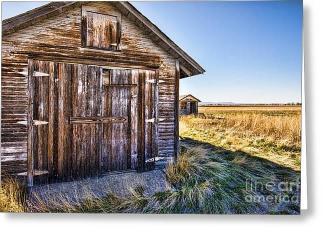 Barn Wood Greeting Card by Keith Ducker