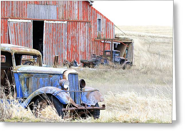 Barn Yard Gold Greeting Card