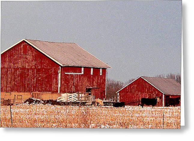 Barns In Winter Greeting Card by David Bearden