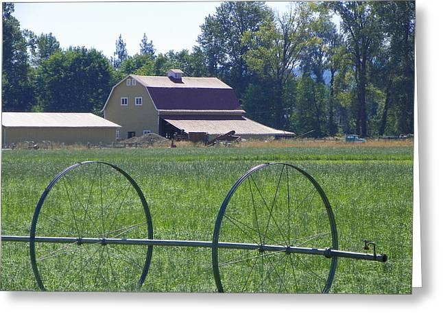 Barns Greeting Card by Laurie Kidd